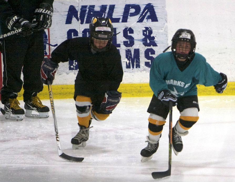 Summer Hockey Day Camp